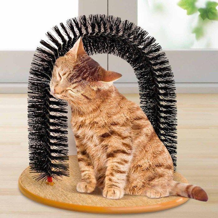 1001 ideen in inspirierenden bildern f r katzenspielzeug. Black Bedroom Furniture Sets. Home Design Ideas