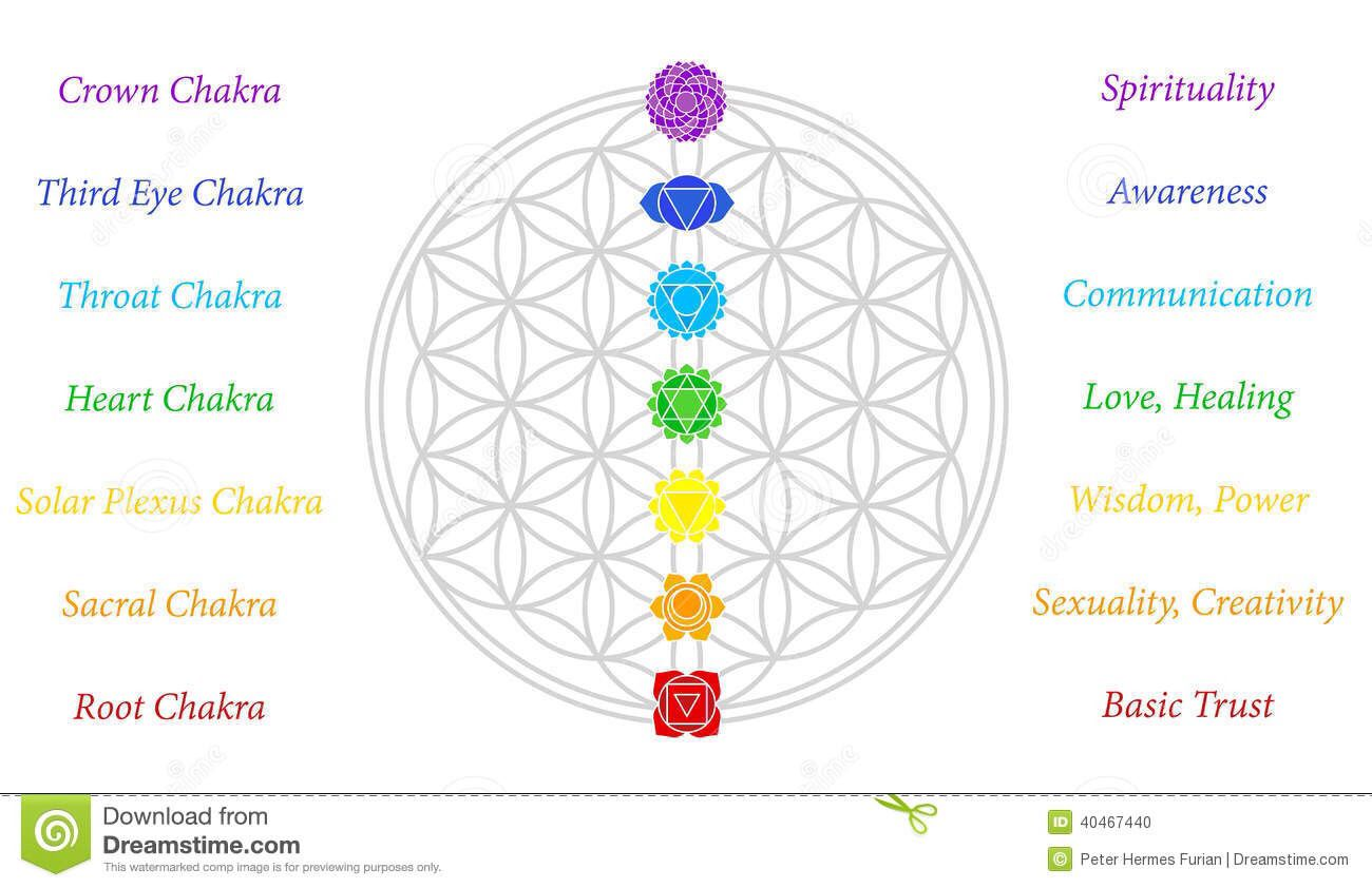 Chakras The Seven Main Chakras And Their Meanings Which Match Perfectly Onto The Junctions Of The Flower Of Lif Flower Of Life Meaning Chakra Flower Of Life
