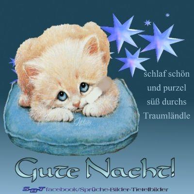 Grusse Zur Nacht Gute Nacht Gute Nacht Grusse Nacht Grusse