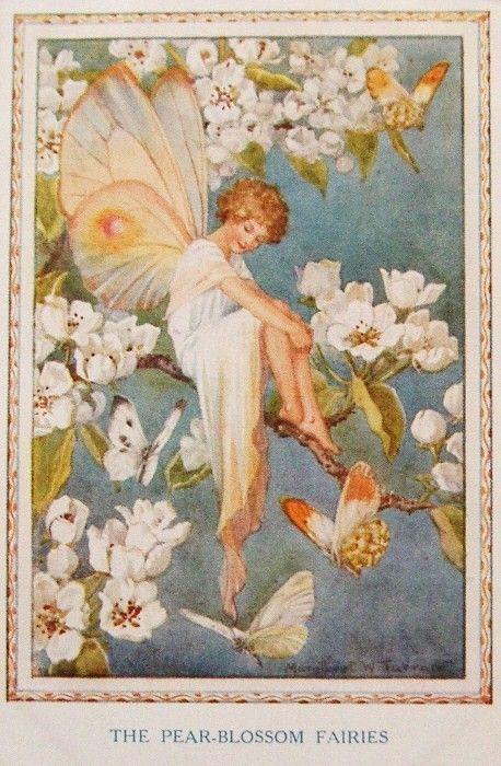Pear-Blossom Fairies  *
