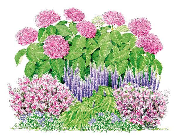 Un jardin qui vous ressemble globe planter jardinage for Jardin que planter