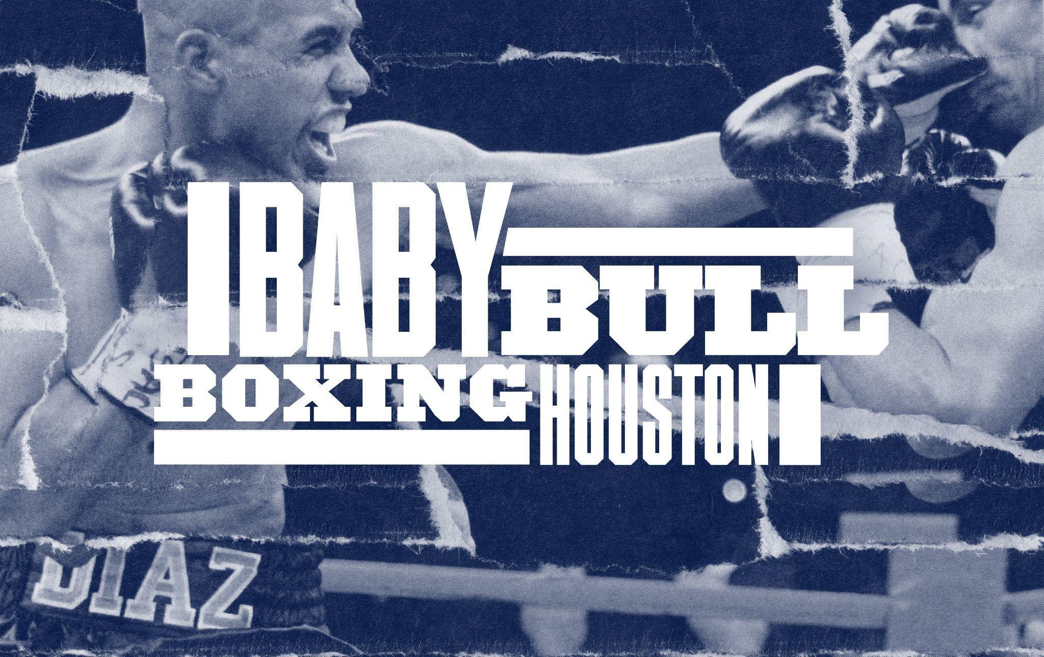 Baby bull boxing logo and interior graphics visual