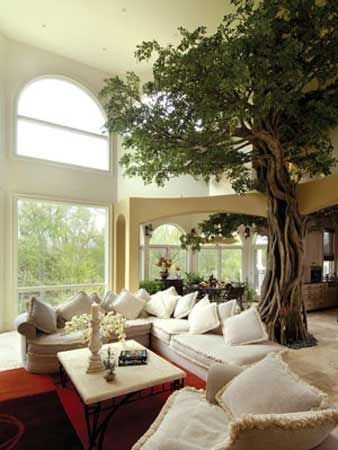 Living Room Tree Simple Comfortable Home Modernly Decorated Welcomes The Nature Inside By Oscar Gonzalez Moix