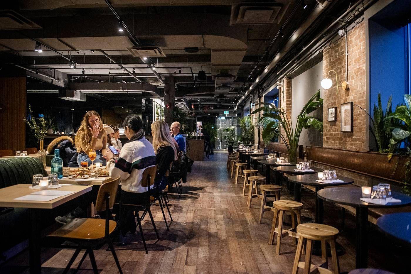 Annex commons blogto toronto best restaurants in