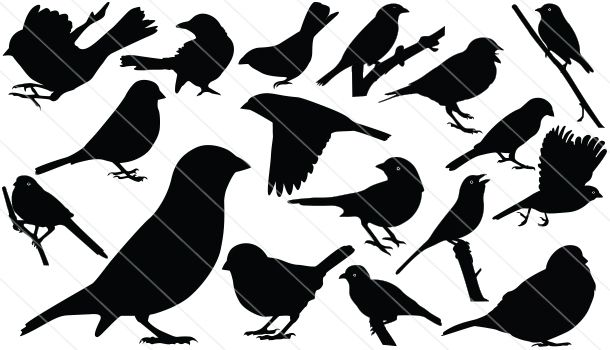 Sparrow Silhouette Vector Download Sparrow Bird Silhouette Bird Silhouette Silhouette Vector Animal Silhouette