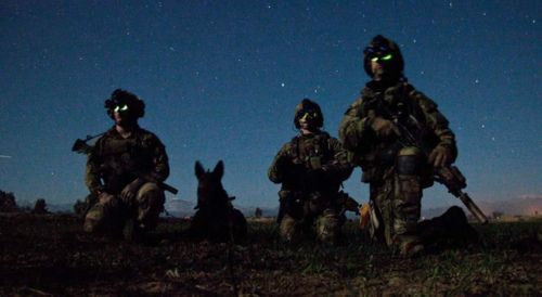 US Army Rangers from 3rd Battalion, 75th Ranger Regiment and their ...