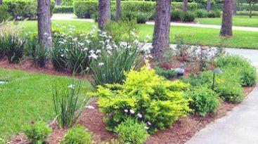 Landscape Gardening Design from Landscape Gardening Job ...