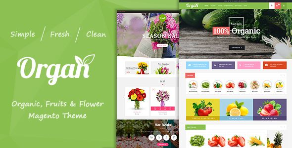 Organ - Organic Store & Flower Shop Responsive Magento Theme ...