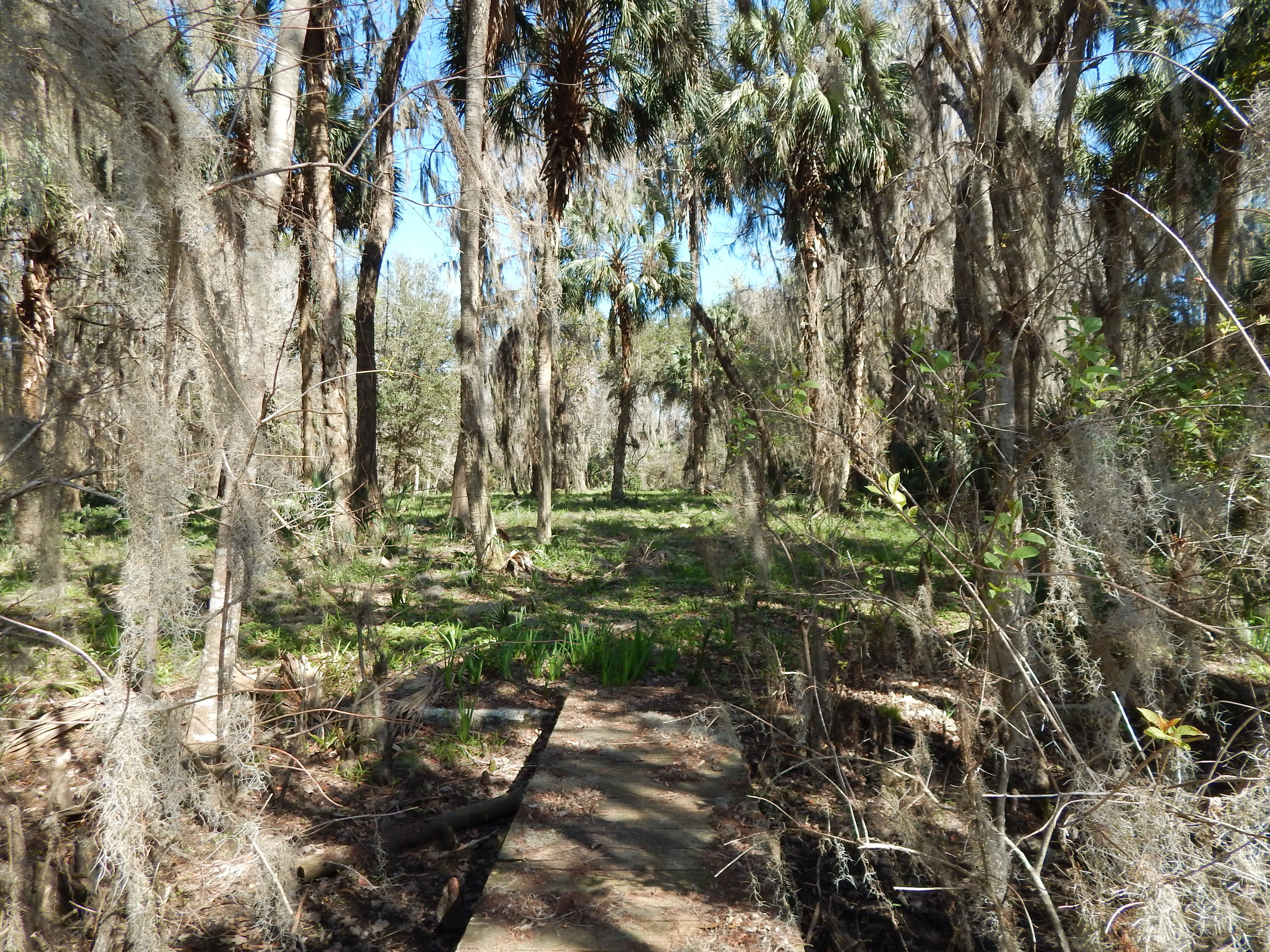 ccc66da3517ccc07951b98c245ac6da0 - Forest Lawn Memory Gardens Ocala Fl