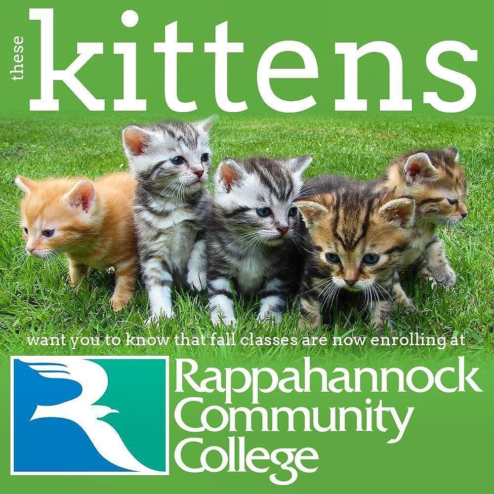 Instagram Photo By Rappahannock Community College Jun 29 2016 At 7 05pm Utc New Kent College Community College