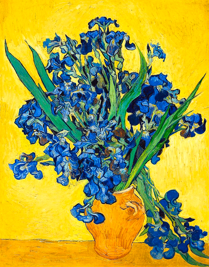 Irises Painting by Vincent van Gogh