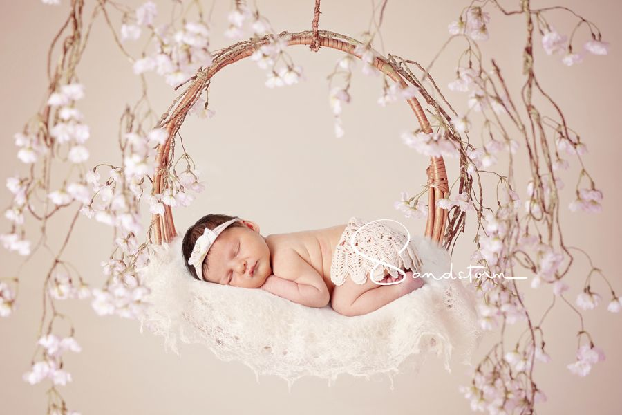 Blossom Dreamcatcher With Baby Dolly 5 Days New Newborn