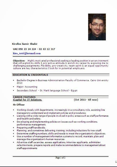 Beautiful Resume Design Sample Template Example Ofexcellent
