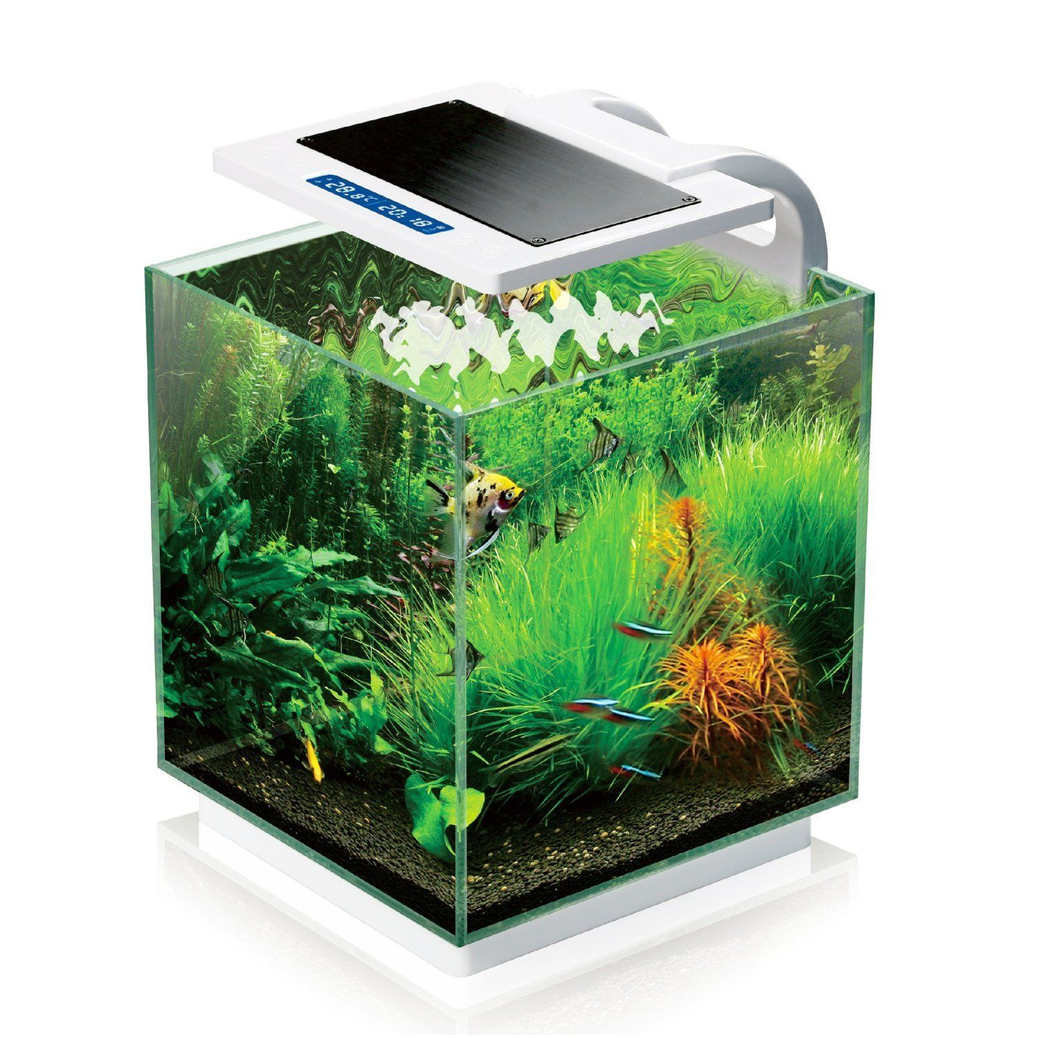 Aquarium glass fish tank 4 gallons 10 x 10 x 10 led light for 10 gallon fish tanks