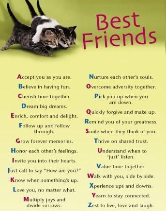 Friends Sayings And Quotes Words Friendship Famous Quotes Best Cool Best Quotes Ever About Friendship