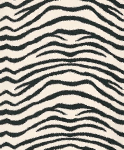 Albany Catwalk (10590) - Albany Wallpapers - A beautiful stylised zebra  print design giving