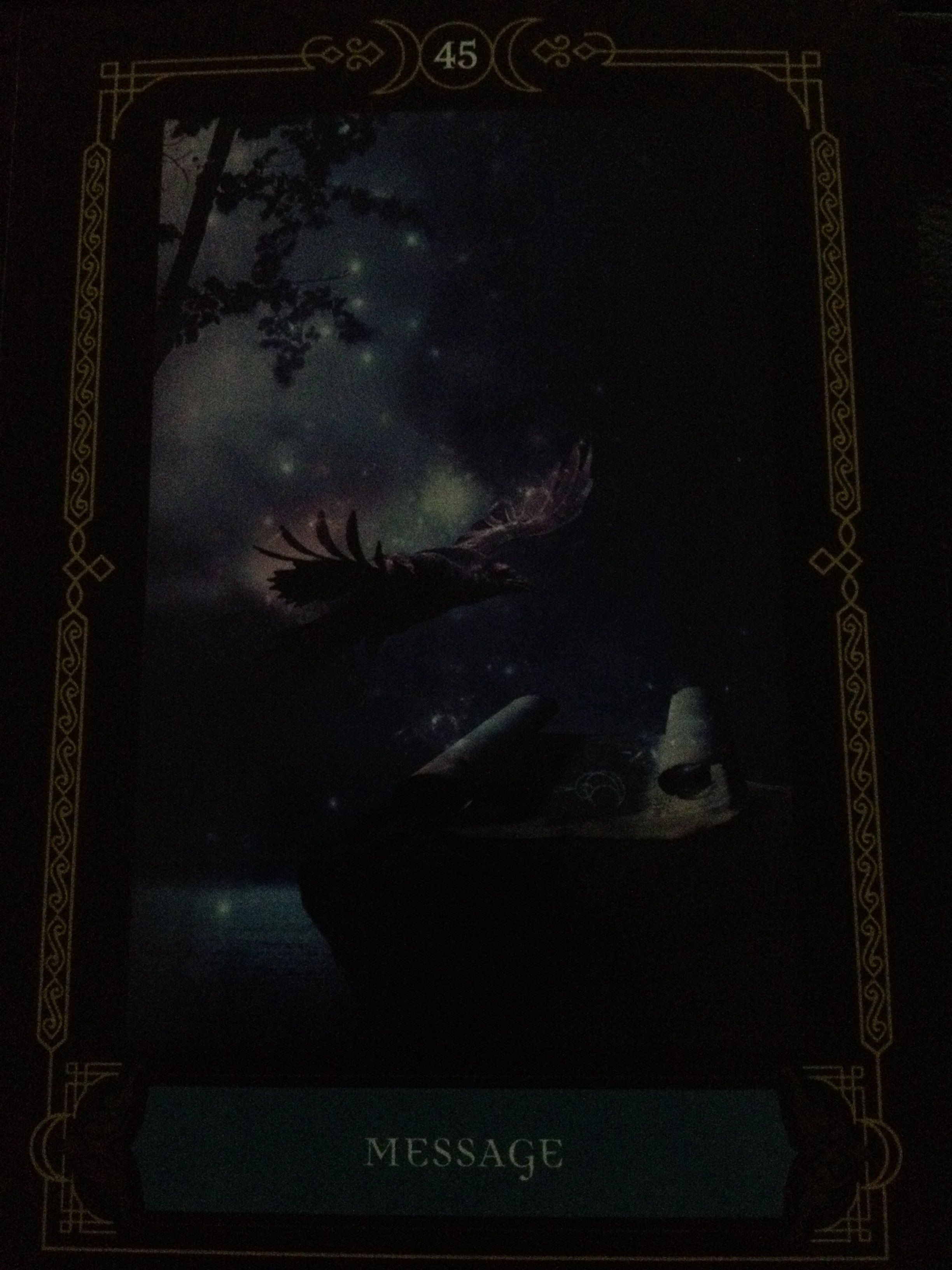 Card 45 Message Wisdom Of The House Of Night Oracle Deck This Card Is Absolutely Stunning In Every Way I Have Goddess Magic Oracle Decks House Of Night