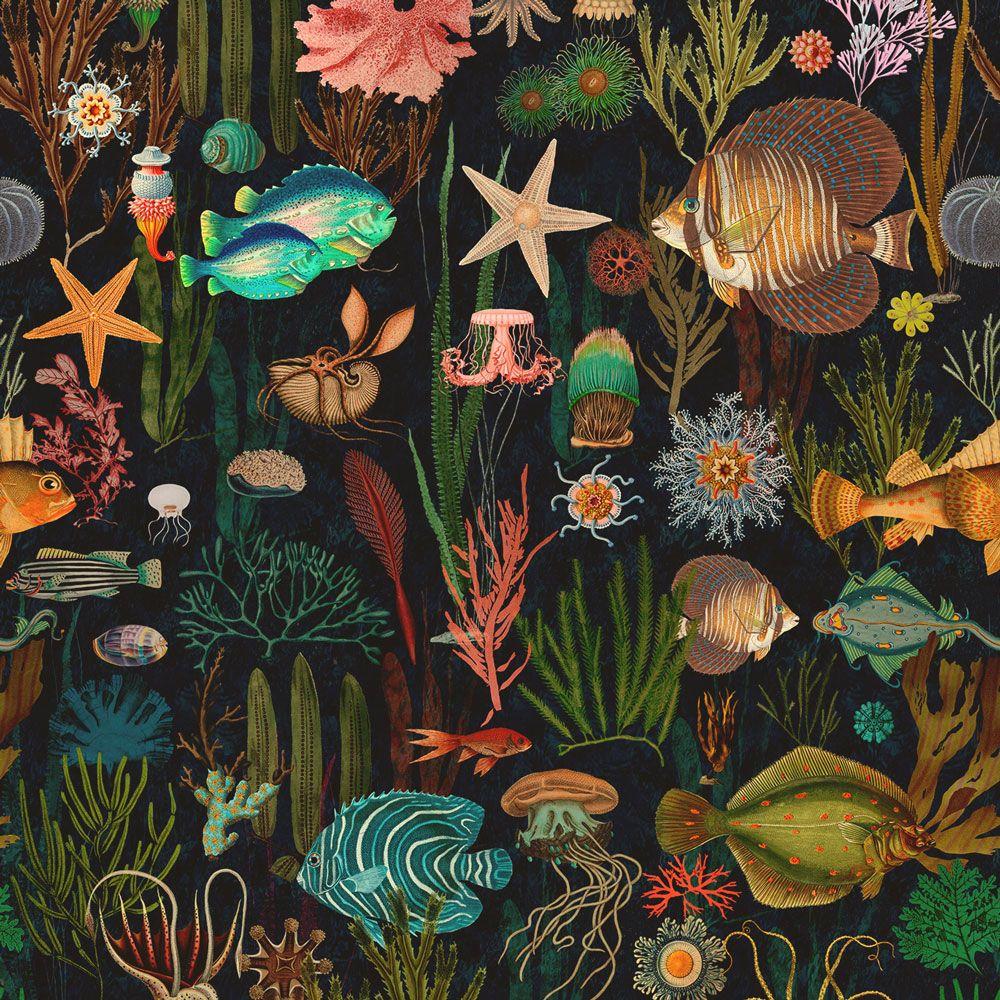Mind The Gap Oceania Wp20304 輸入壁紙専門店 Walpa 壁紙のデザイン アートポスター アート