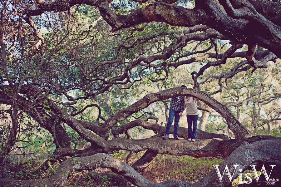 Somewhere in the Woods. www.WhoisWeston.com #whoisweston #Engagement #photography #Loveshoot