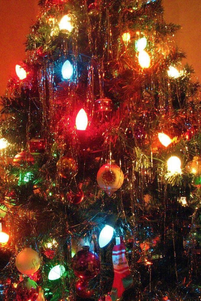 La Nuit De Noel Light Into The Tree