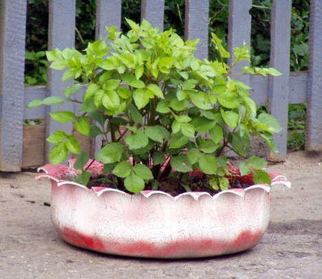 Los profesionales del hogar de Reparalia te enseñan hoy varias ideas - jardines con llantas
