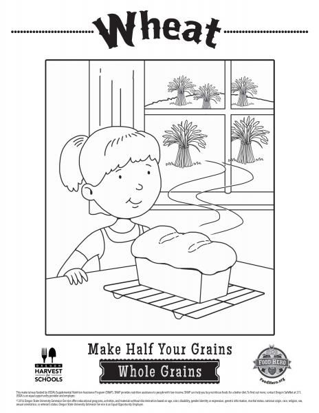 Coloring Pages Whole Grain Wheat Coloring Sheets Food Hero