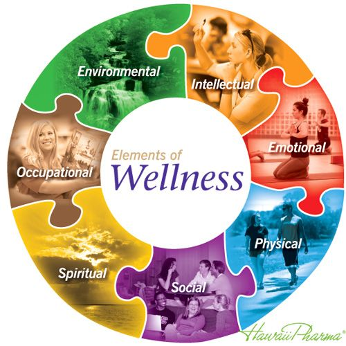 Home Wellness Wheel Health And Wellness Wellness