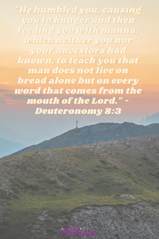 Your Daily Verse - Deuteronomy 8:3