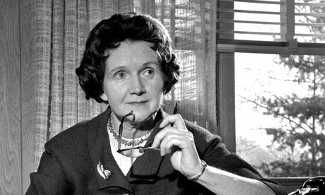 Rachel Carson, author of Silent Spring, at the typewriter in her library at home in Washington DC on 13 March 1963. Photograph: Bob Schutz/A...