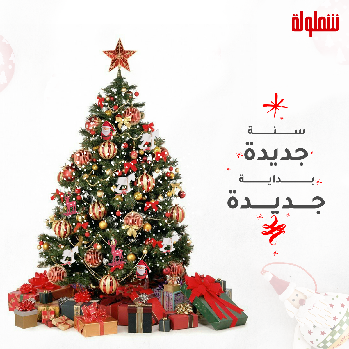 ٦ خطوات بسيطة و شجرة الكريسماس تبقى جاهزة Holiday Decor Christmas Tree Decor