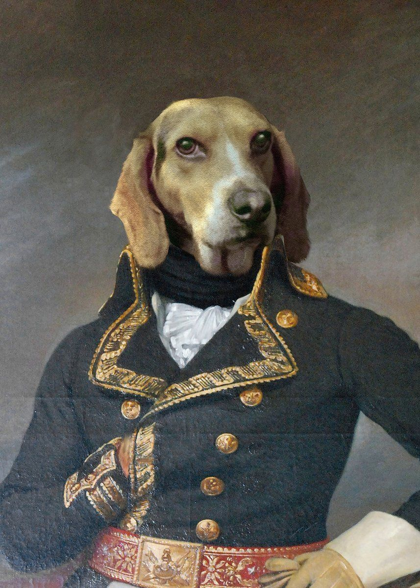 The Admiral Your Pet Here Custom Pet Painting Custom Pet Painting Animal Paintings Paint Your Pet
