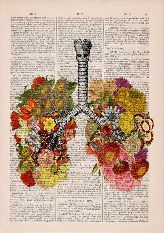 Flowery Lungs human Anatomy Print on dictionary. Anatomy art, love ...