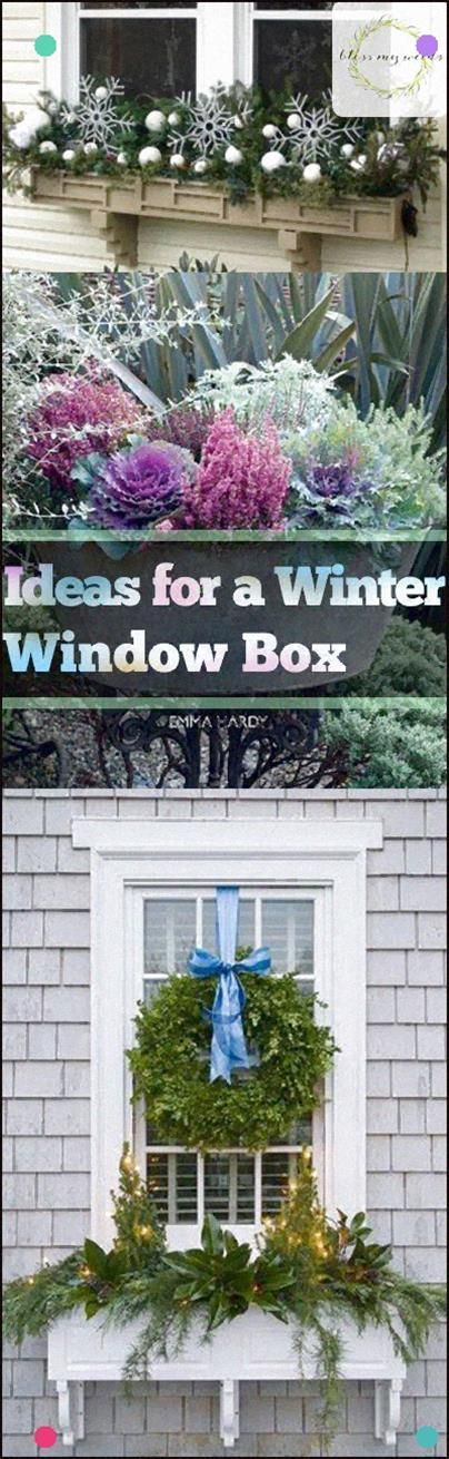 Ideas For A Winter Window Box - Bless My Weeds Winter Window Box Decor Ideas, Di...