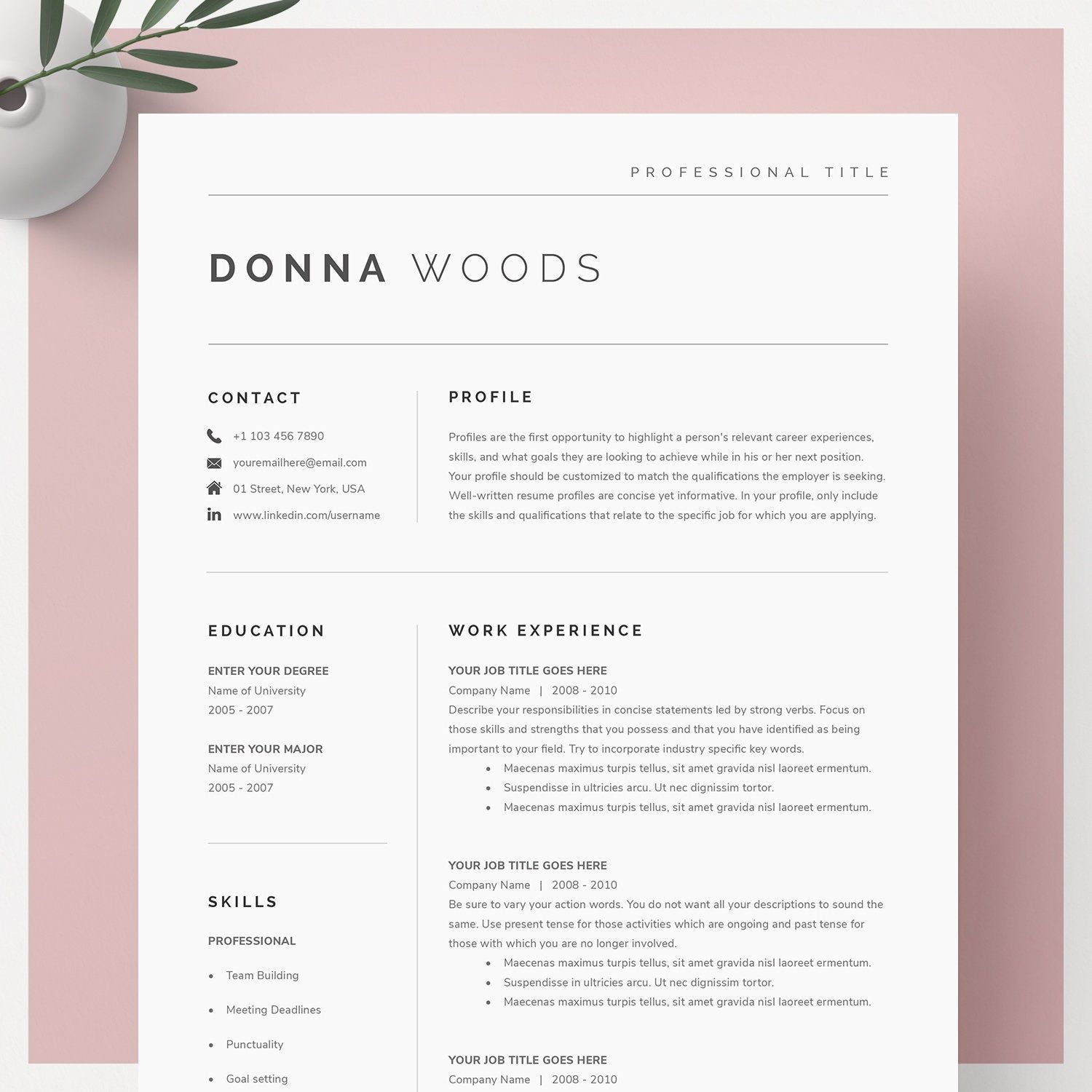 Google Docs Resume Template Resume Template Resume