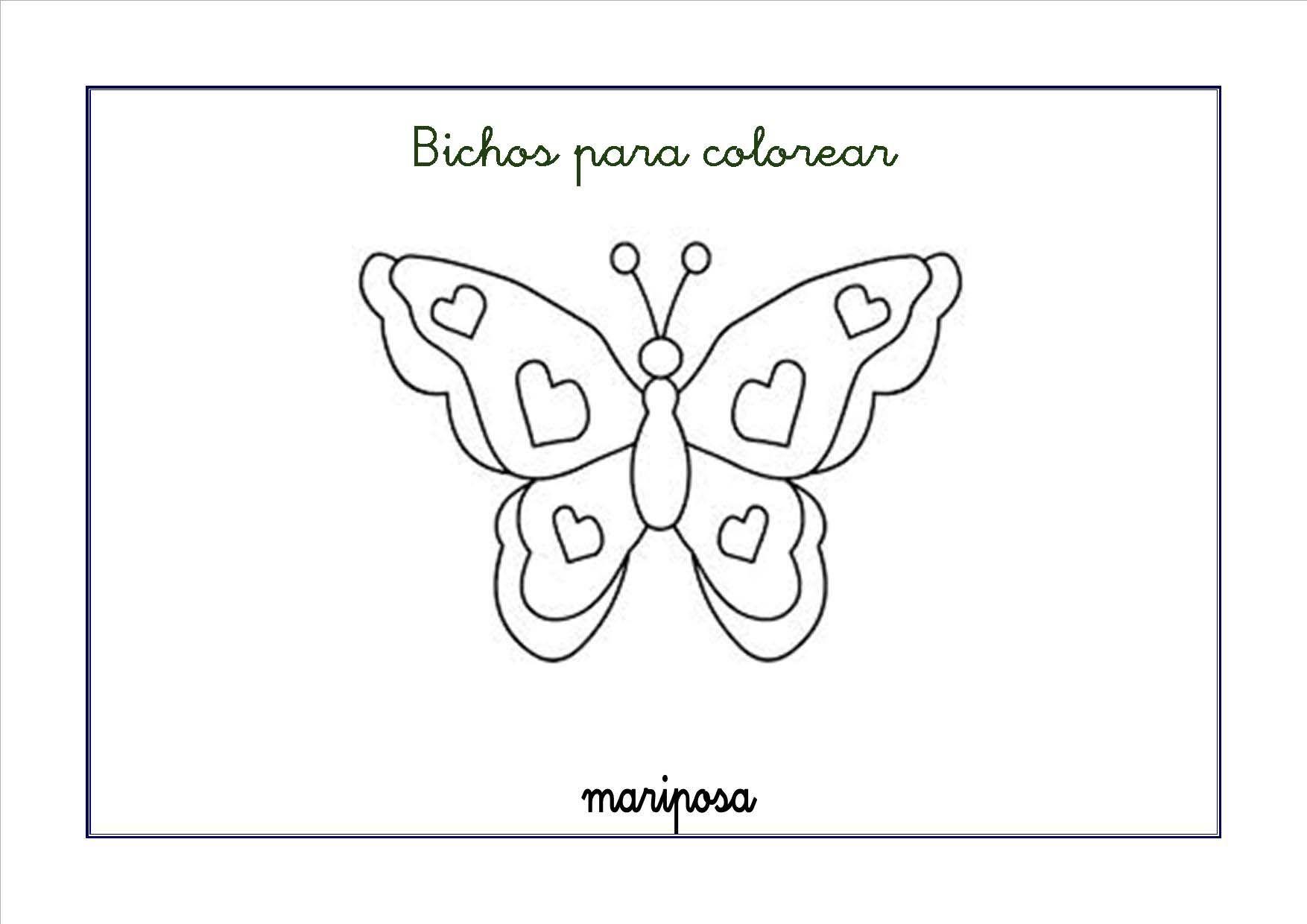 Fichas De Insectos Y Bichos Para Colorear Aprende Los Insectos Que