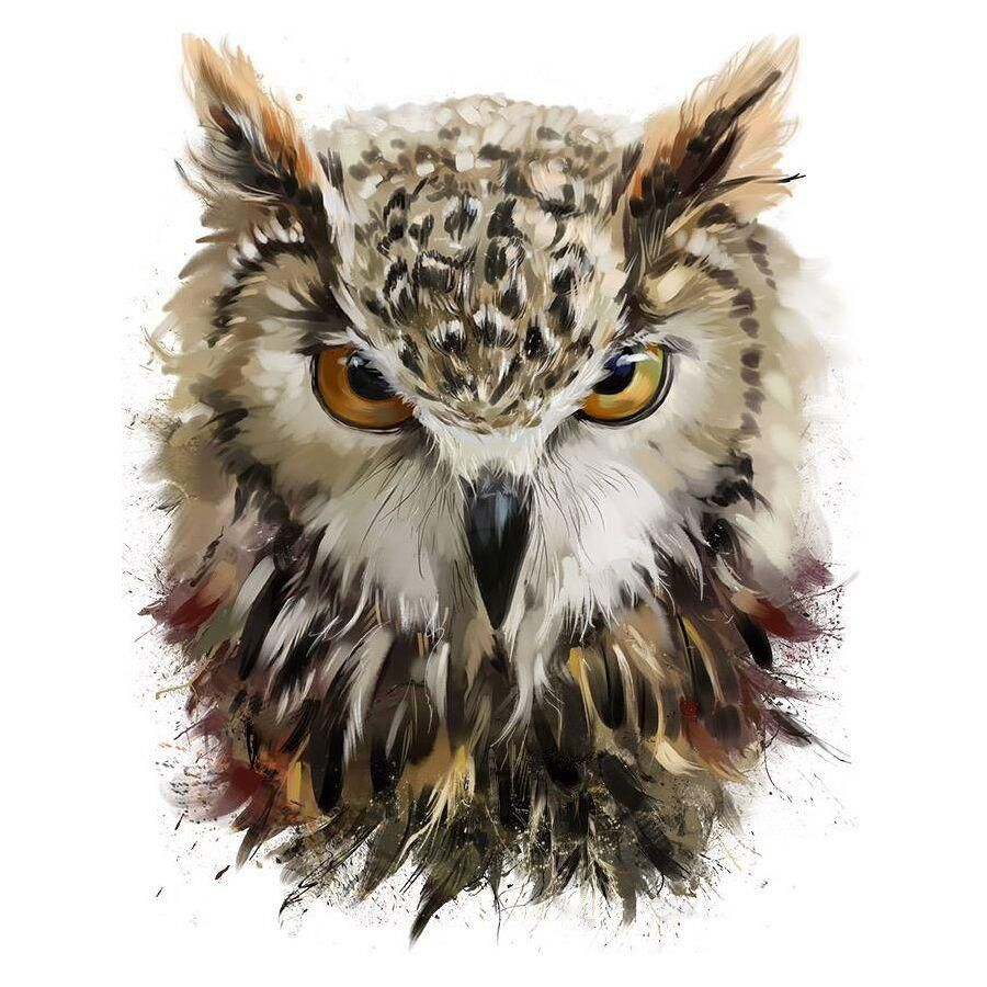 Photo of Diamond Painting – Angry Owl