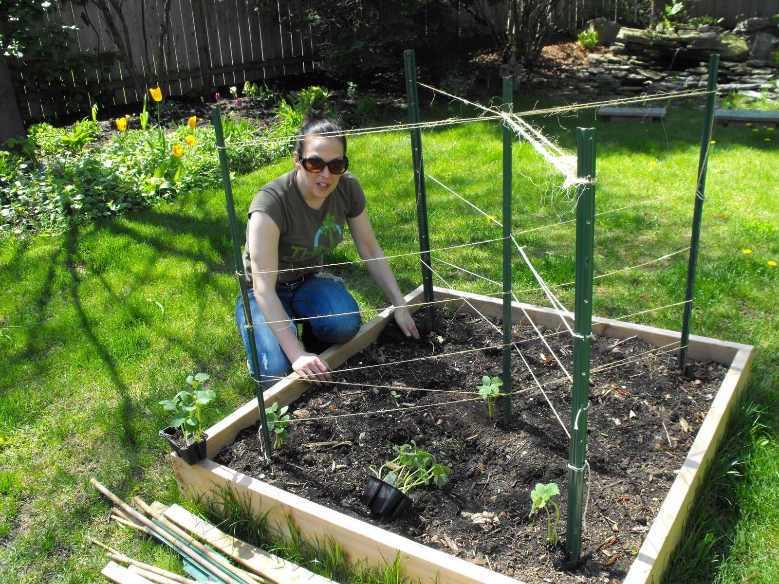 Good Cucumber Trellis Ideas Part - 5: Raised Bed Trellis For Cucumbers - Bing Images