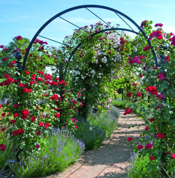 Garden Archway - www.classic-garden-elements.co.uk - Garden-Obelisks ...