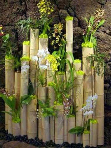 Pin De Belkis Caban Em Weddings Jardim De Bambu Como Plantar