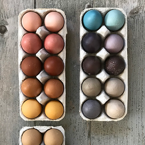 naturkinder oster eier mit naturfarben f rben dyeing easter eggs with natural colors 3596. Black Bedroom Furniture Sets. Home Design Ideas