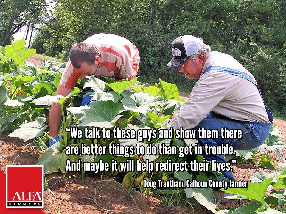 Calhoun County Farmer Doug Trantham Calhoun County Calhoun Farmer