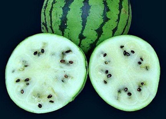 أجمل خلفيات صور فواكه العنب عالم الصور Organic Recipes Fruit Wallpaper Benefits Of Organic Food