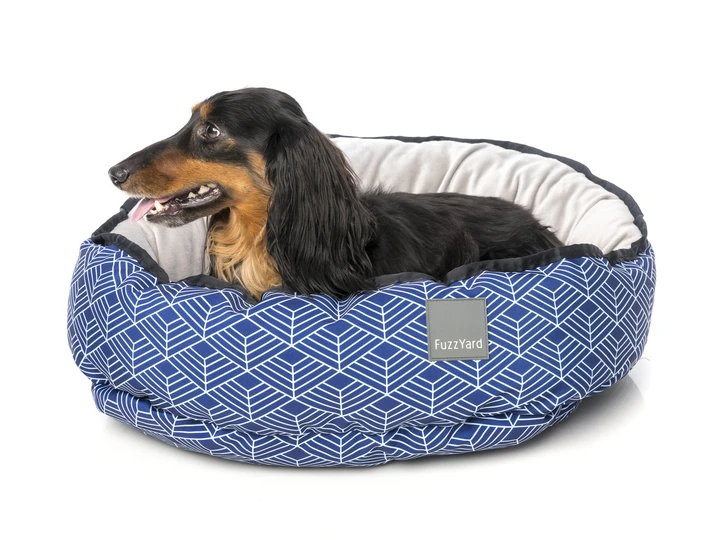 Pin On The Most Comfy Dog Beds