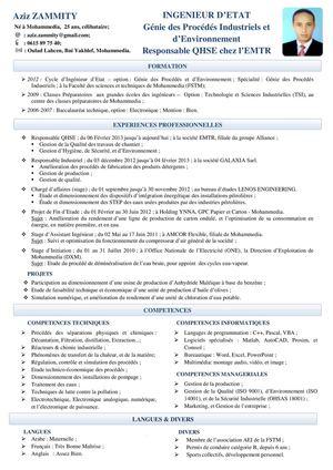 Cv M Aziz Zammity Ingenieur D Etat En Genie Des Procedes Et D Environnement Genie Des Procedes Ingenieur Gestion De Production