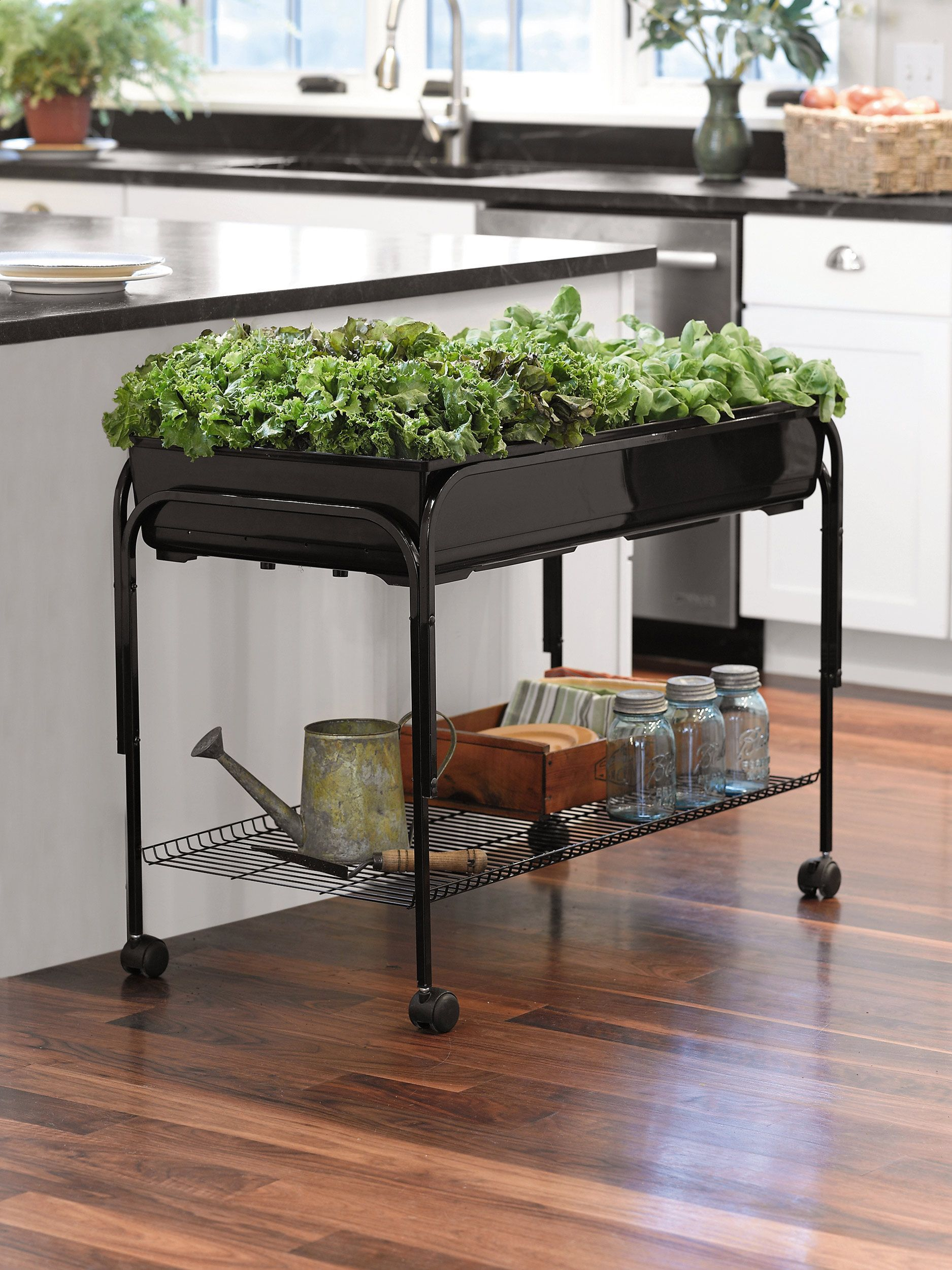 mobile grow cart keep the cart with herbs and plants outside