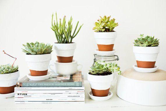 Half White Terra Cotta Planter Succulent Planter With Drip Bowl