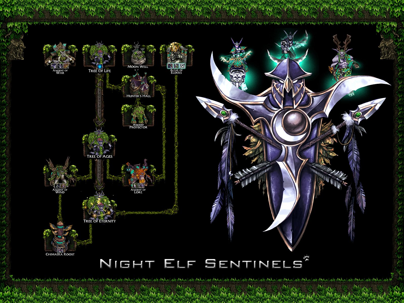 Wow Night Elf Female Wallpaper World Of Warcraft Night Elf