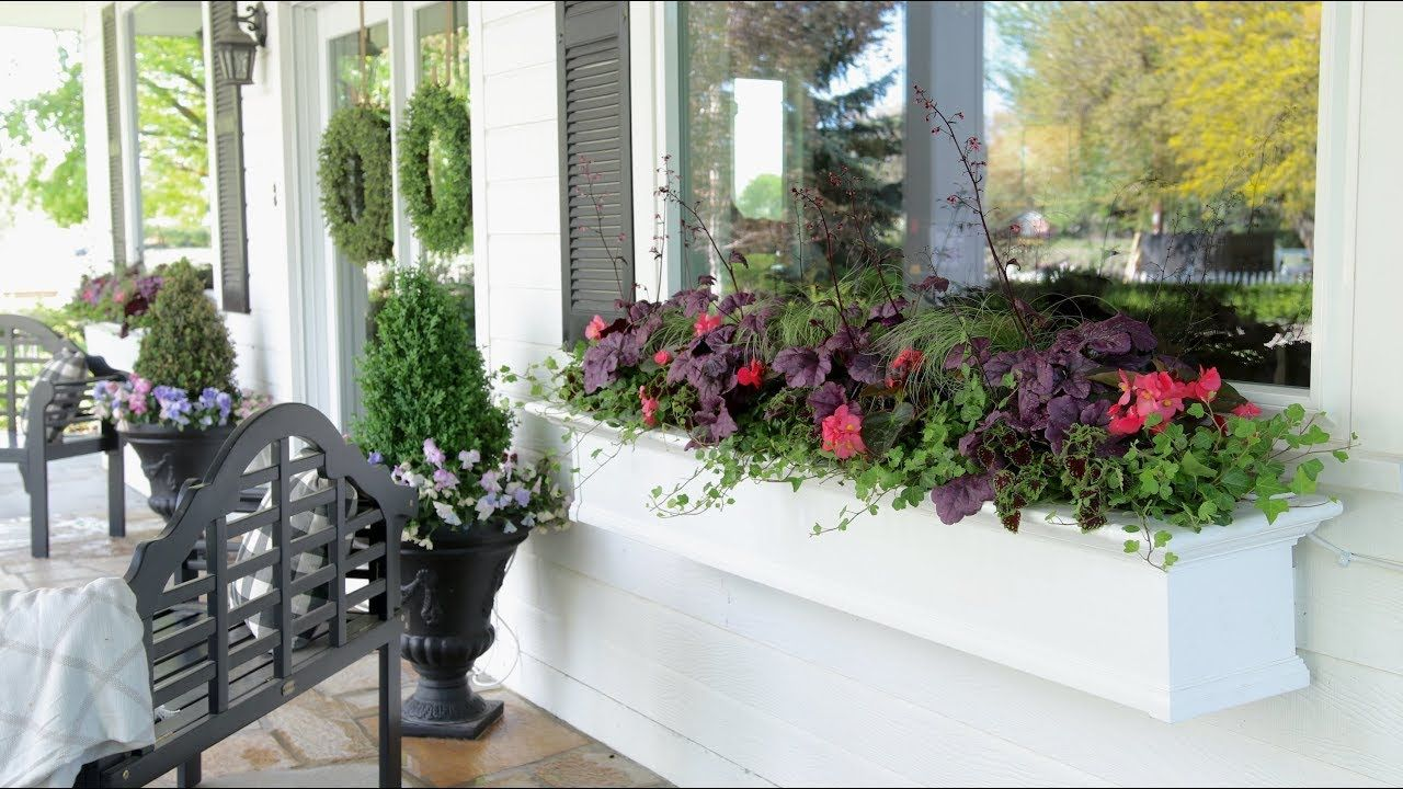 Planting Shade Loving Plants In My Window Boxes Garden