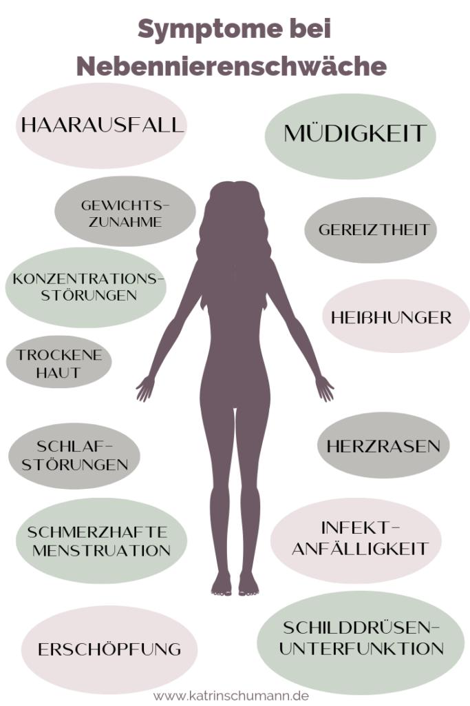 Nebennierenschwäche Selbsttest