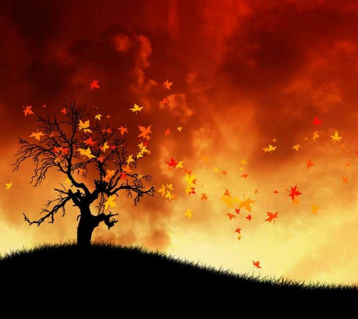 Tree On Fire Abstract Landscape Painting Fire Painting